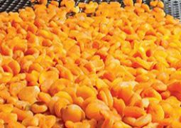Produce dried apricot