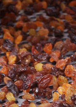 Persian raisins grade AA for export